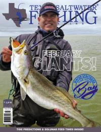 TSF Mag - February 2017